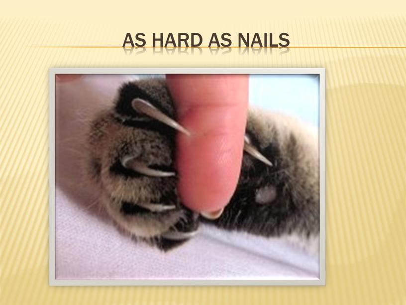 As hard as nails