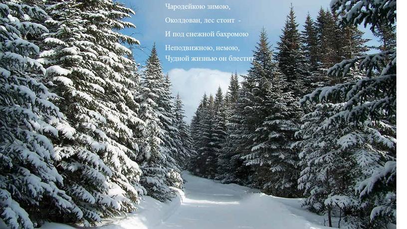 Чародейкою зимою, Околдован, лес стоит -