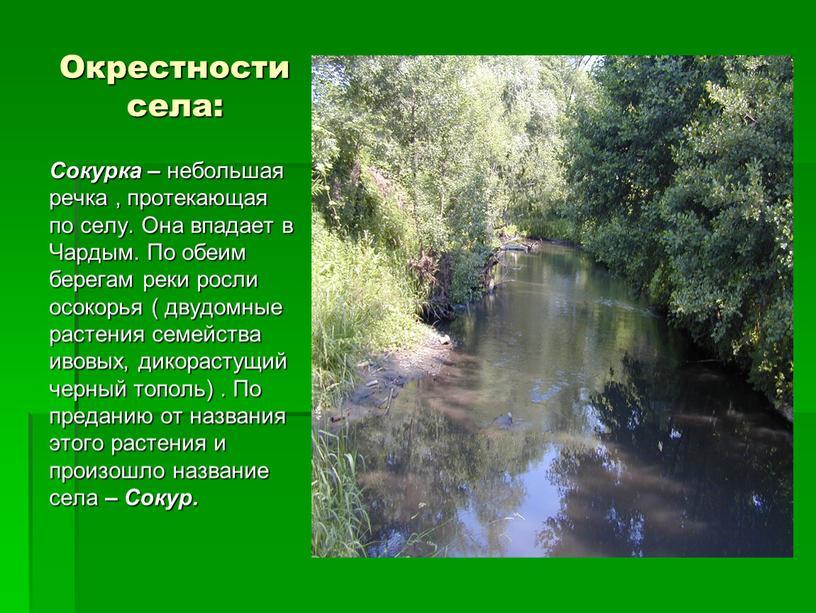 Окрестности села: Сокурка – небольшая речка , протекающая по селу