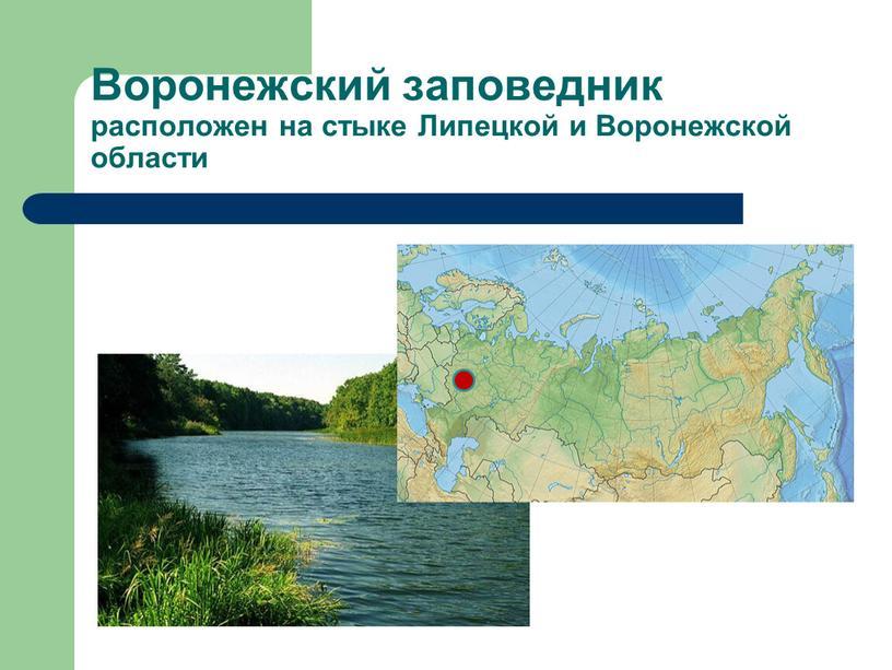 Воронежский заповедник расположен на стыке