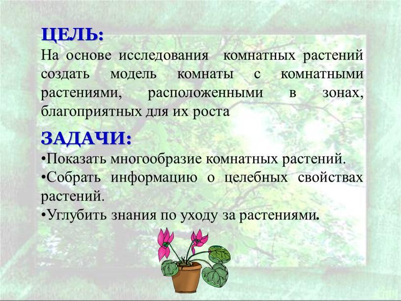 ЦЕЛЬ: На основе исследования комнатных растений создать модель комнаты с комнатными растениями, расположенными в зонах, благоприятных для их роста