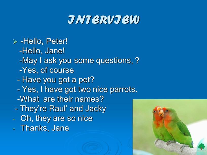 INTERVIEW -Hello, Peter! -Hello,