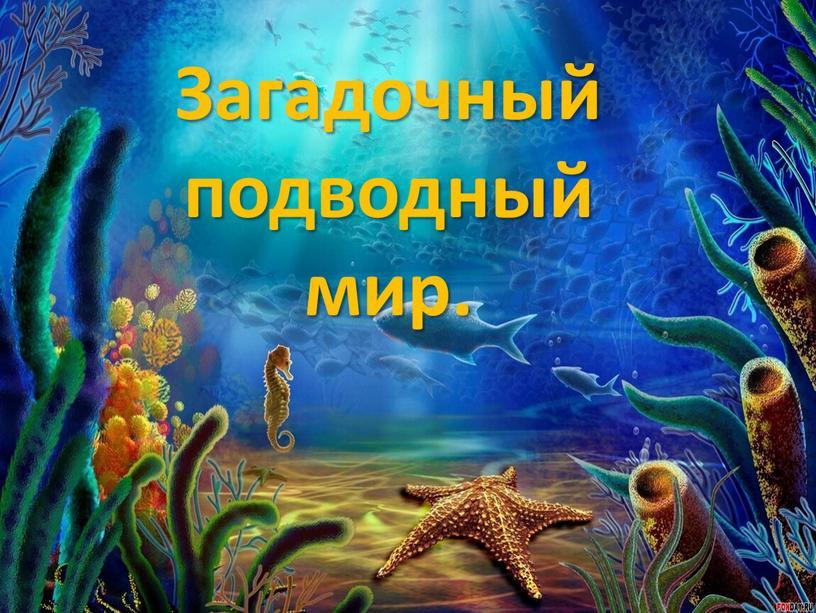 Загадочный подводный мир.