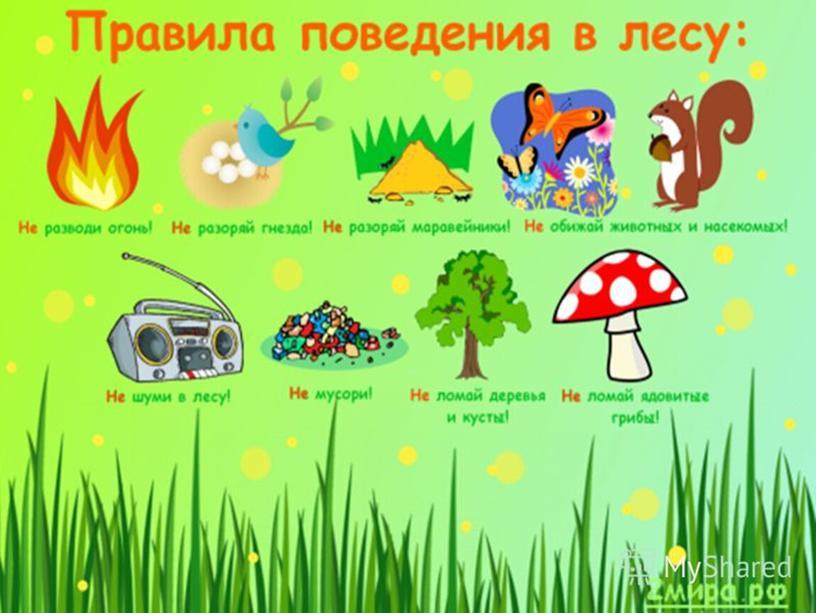 """Презентация по окружающему миру на тему """"Лес и человек""""(4 класс окружающий мир)"""