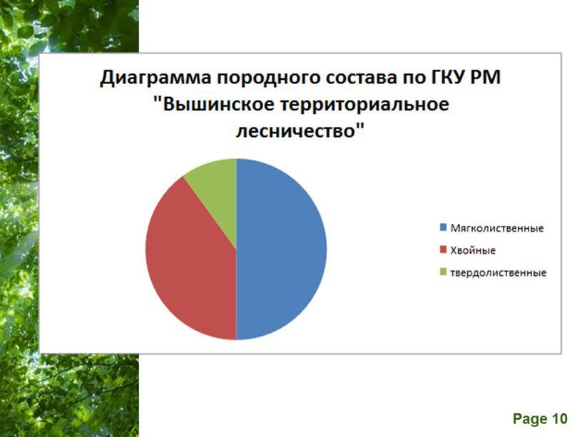 """Исследовательская работа """"Профессия - лесовод"""" (10 класс)"""