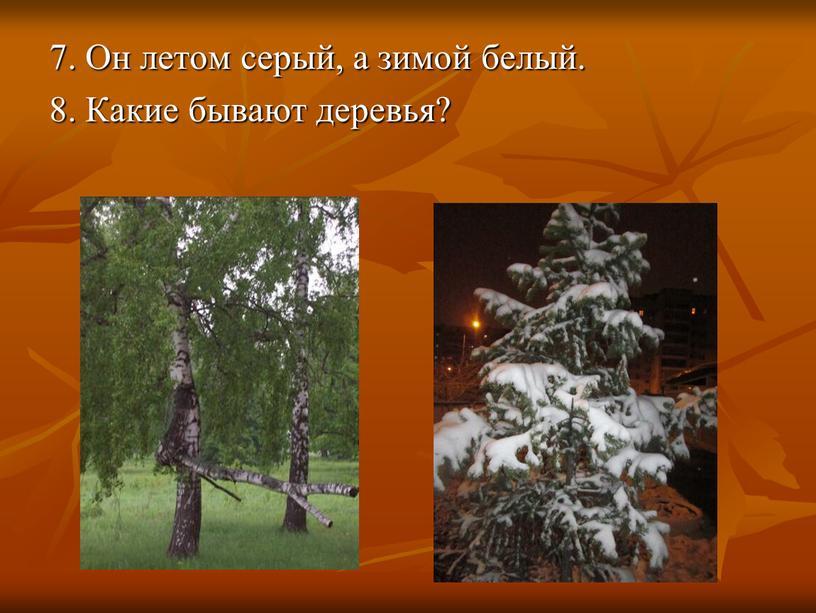 Он летом серый, а зимой белый. 8