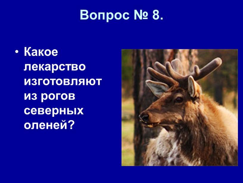 Вопрос № 8. Какое лекарство изготовляют из рогов северных оленей?