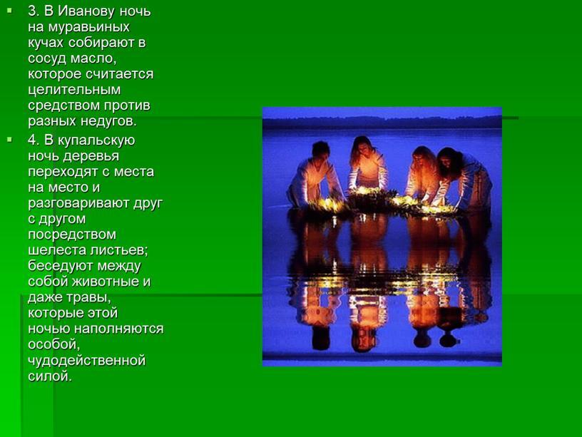 В Иванову ночь на муравьиных кучах собирают в сосуд масло, которое считается целительным средством против разных недугов