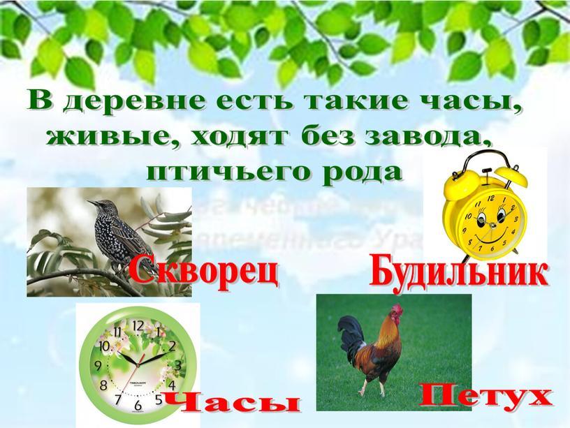 В деревне есть такие часы, живые, ходят без завода, птичьего рода