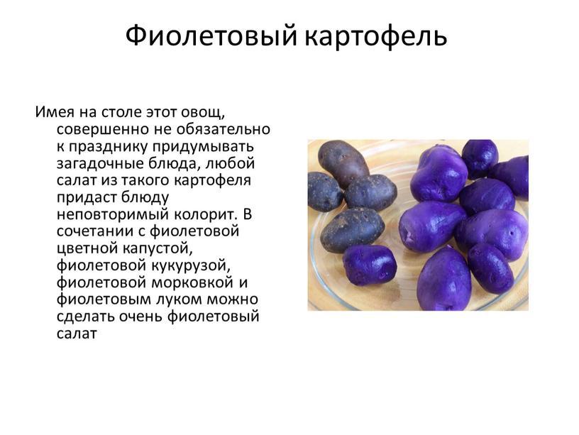 Фиолетовый картофель Имея на столе этот овощ, совершенно не обязательно к празднику придумывать загадочные блюда, любой салат из такого картофеля придаст блюду неповторимый колорит