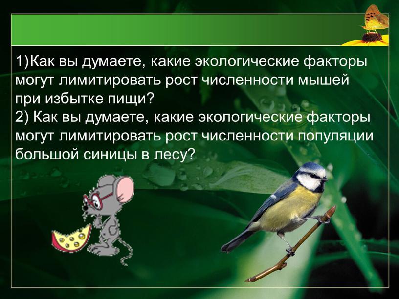 Как вы думаете, какие экологические факторы могут лимитировать рост численности мышей при избытке пищи? 2)