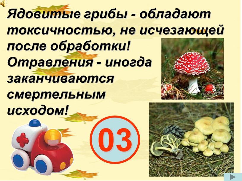 Ядовитые грибы - обладают токсичностью, не исчезающей после обработки!
