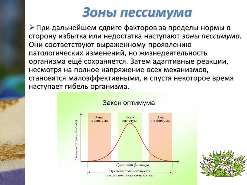 Зоны пессимума При дальнейшем сдвиге факторов за пределы нормы в сторону избытка или недостатка наступают зоны пессимума