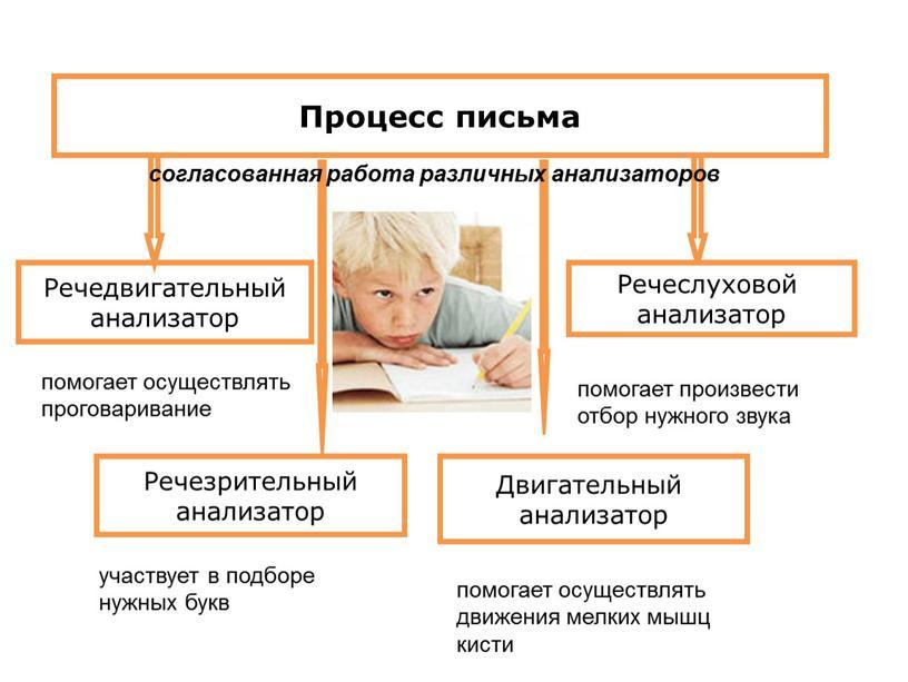 Процесс письма Речезрительный анализатор