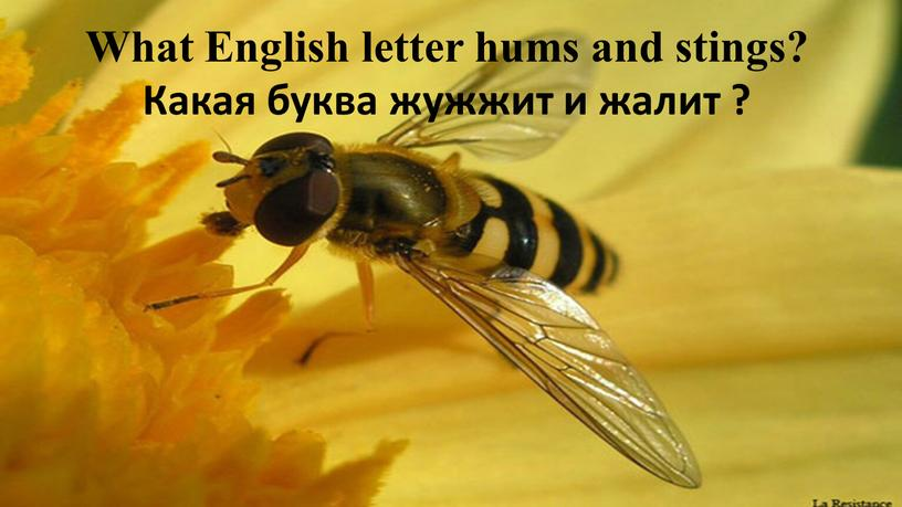 What English letter hums and stings?