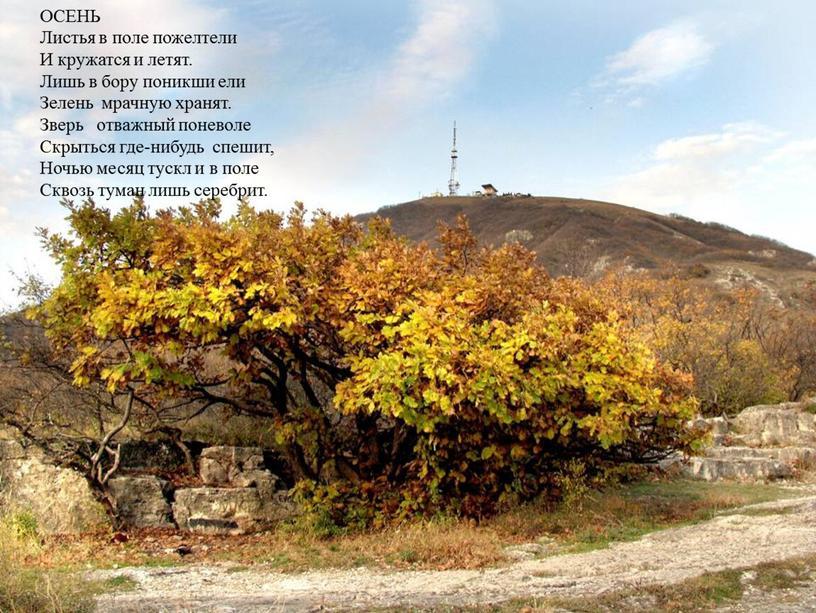 ОСЕНЬ Листья в поле пожелтели И кружатся и летят