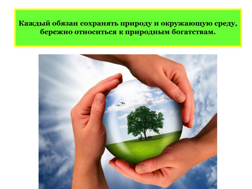 Каждый обязан сохранять природу и окружающую среду, бережно относиться к природным богатствам