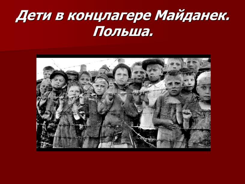 Дети в концлагере Майданек. Польша