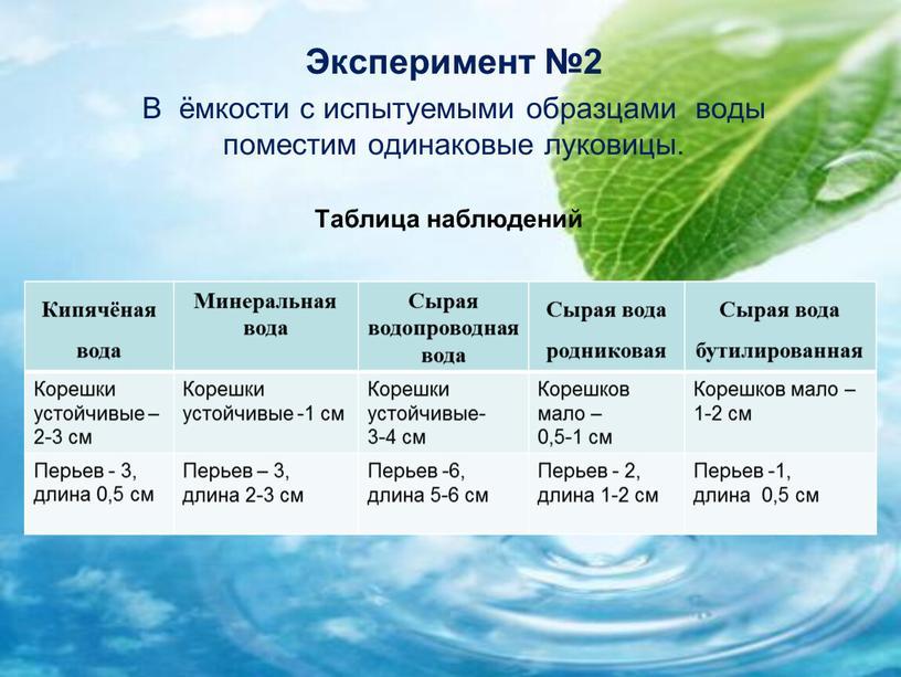 Эксперимент №2 В ёмкости с испытуемыми образцами воды поместим одинаковые луковицы