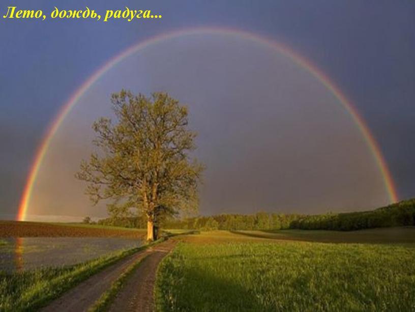 Лето, дождь, радуга...
