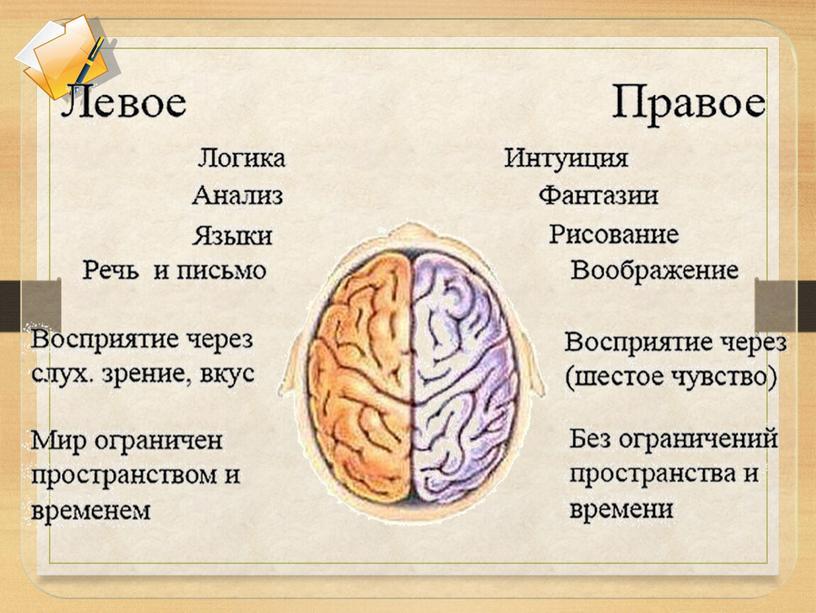 """Презентация """"Использование мыслительных карт Тони Бьюзена"""""""