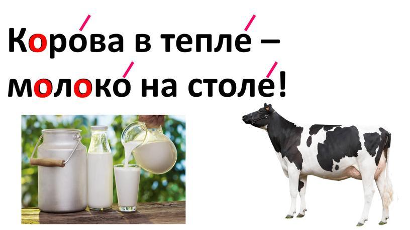 Корова в тепле – молоко на столе! о о о