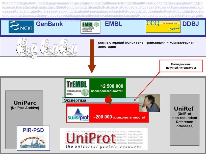UniRef (UniProt non-redundant