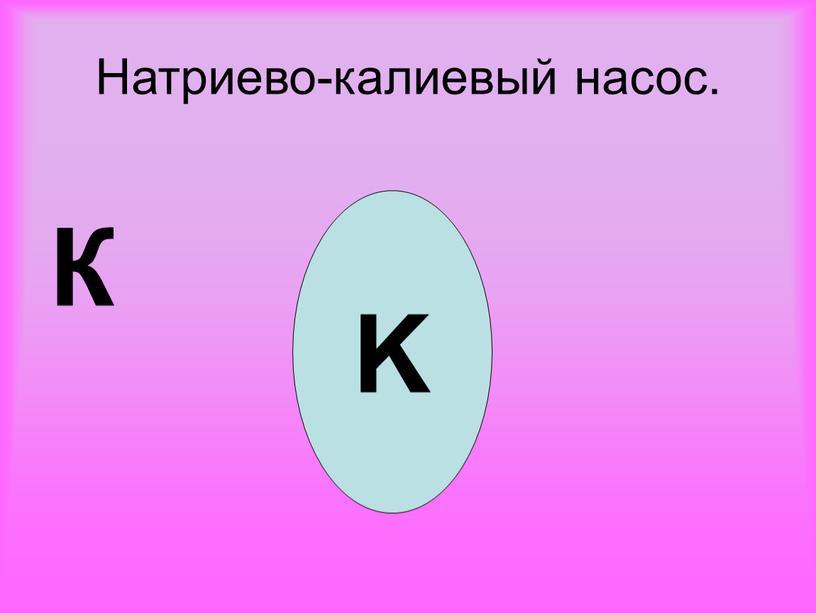 Натриево-калиевый насос. К K