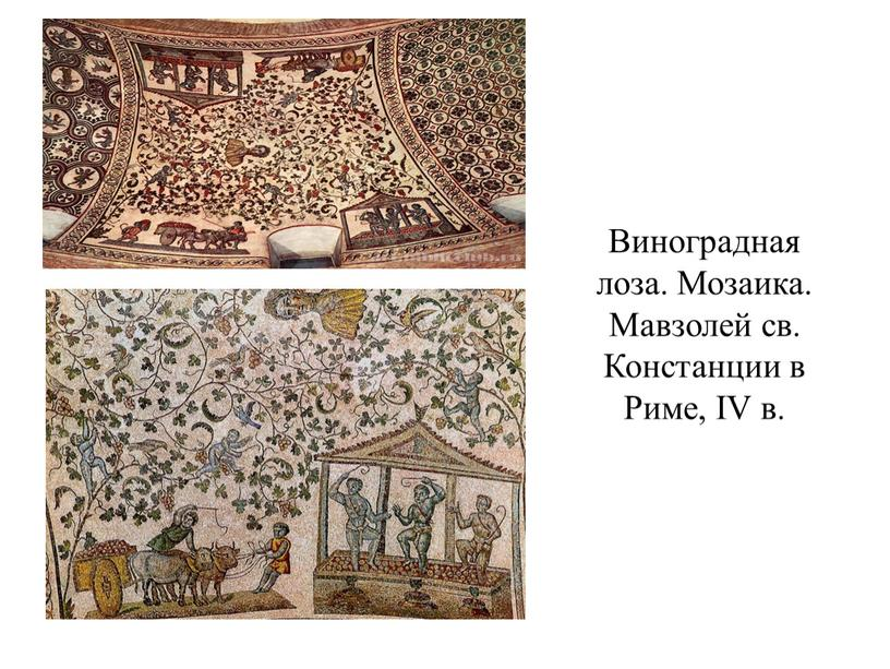 Виноградная лоза. Мозаика. Мавзолей св