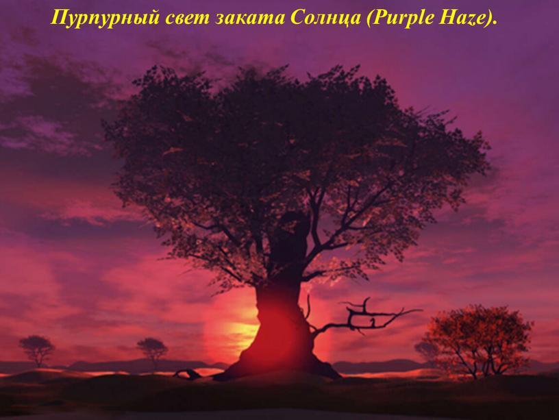 Пурпурный свет заката Солнца (Purple