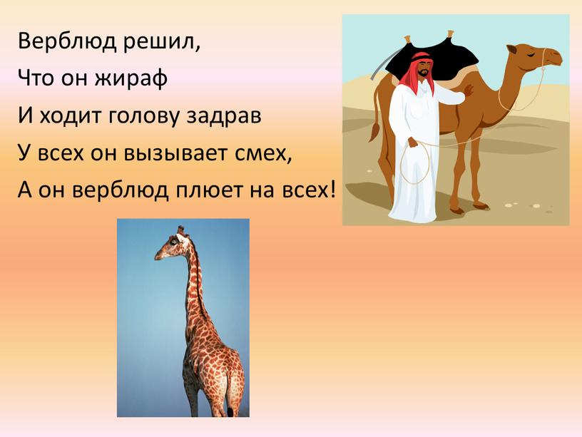 Верблюд решил, Что он жираф И ходит голову задрав