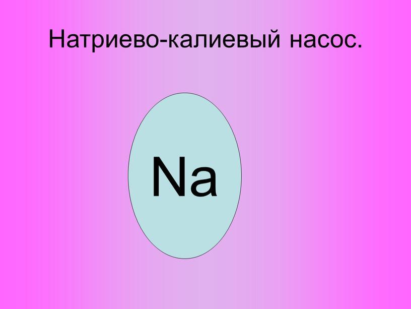 Натриево-калиевый насос. Na