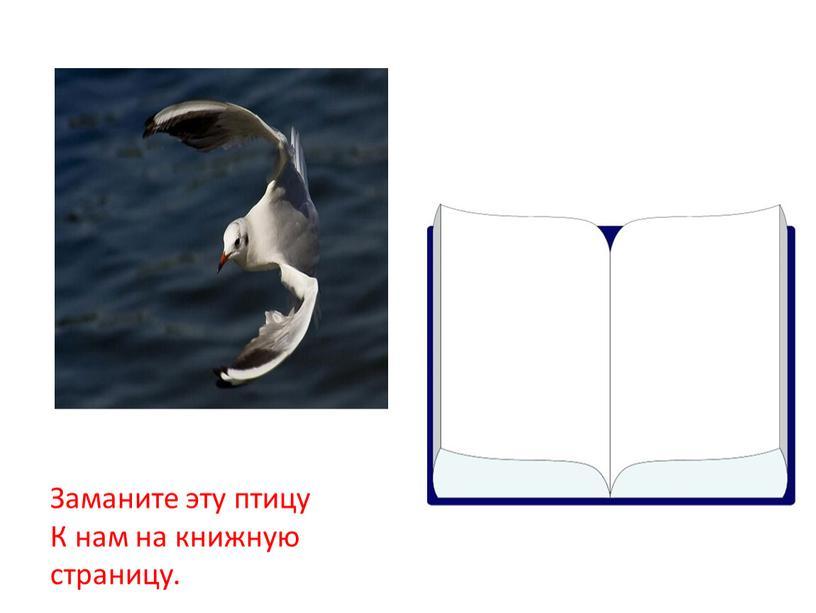 Заманите эту птицу К нам на книжную страницу