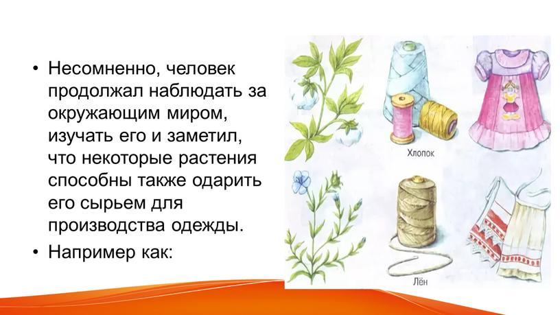 Несомненно, человек продолжал наблюдать за окружающим миром, изучать его и заметил, что некоторые растения способны также одарить его сырьем для производства одежды