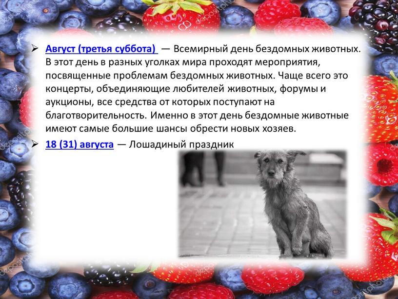 Август (третья суббота) — Всемирный день бездомных животных