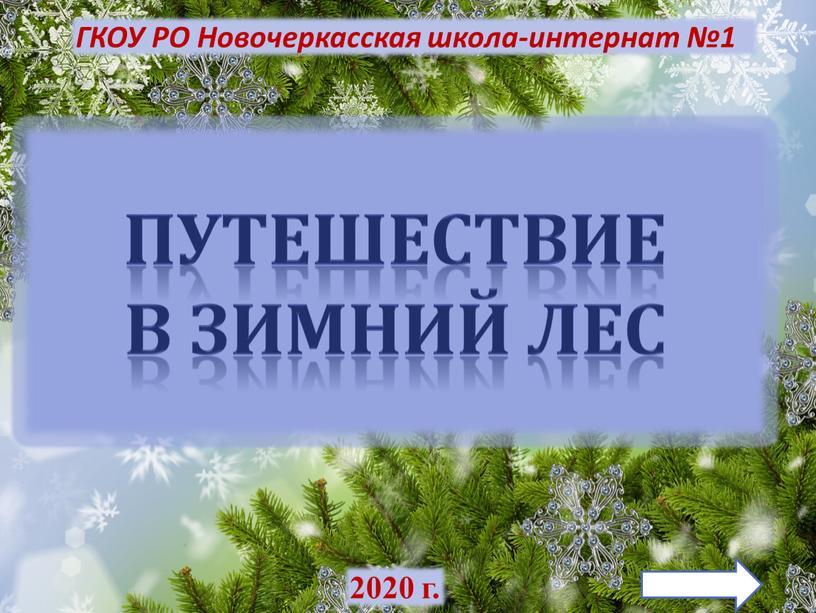 ГКОУ РО Новочеркасская школа-интернат №1 2020 г