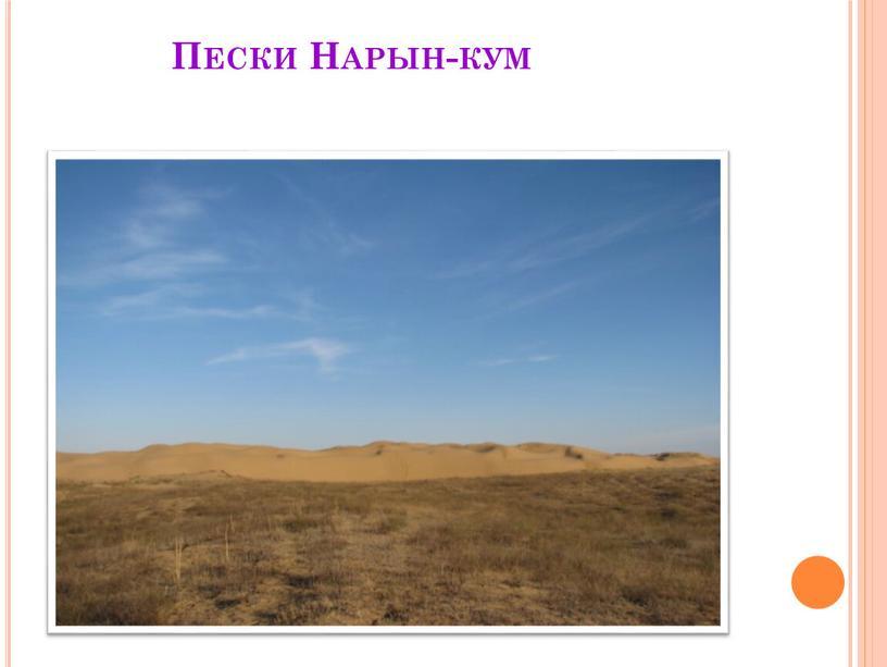Пески Нарын-кум