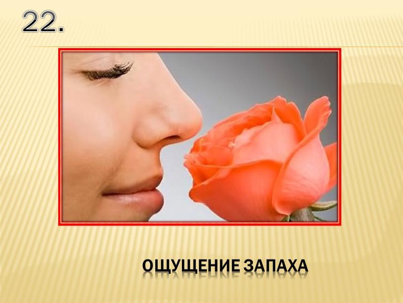 22. ощущение запаха