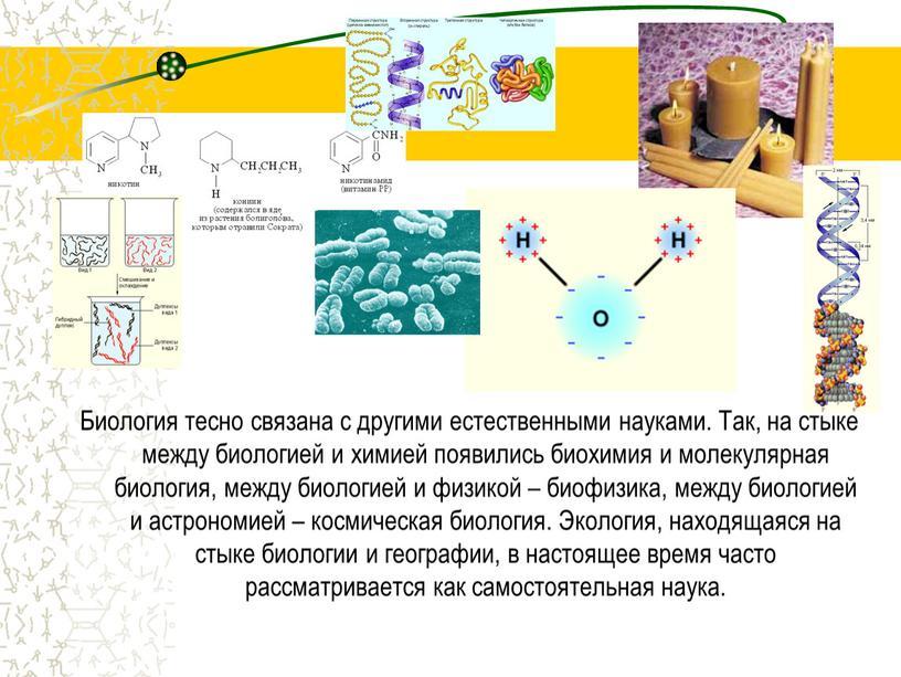 Биология тесно связана с другими естественными науками