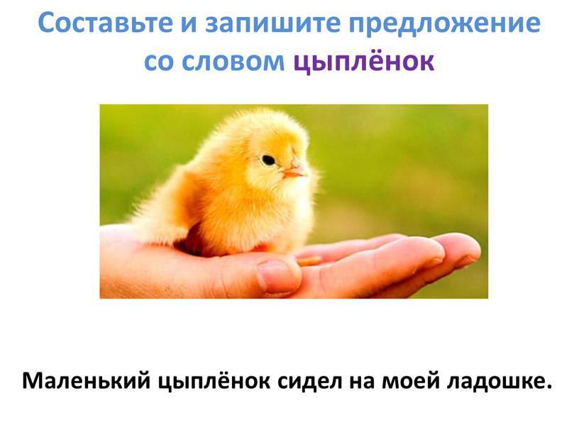 Составьте и запишите предложение со словом цыплёнок