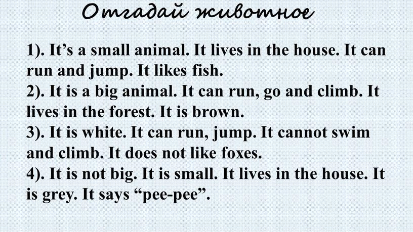 Отгадай животное 1). It's a small animal