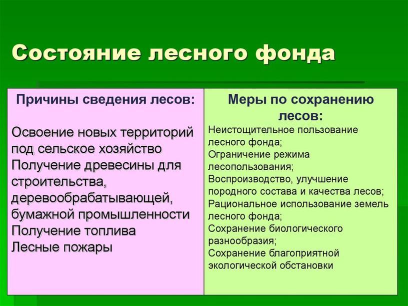 Презентация на тему Эколого-правовой режим лесов и животного мира