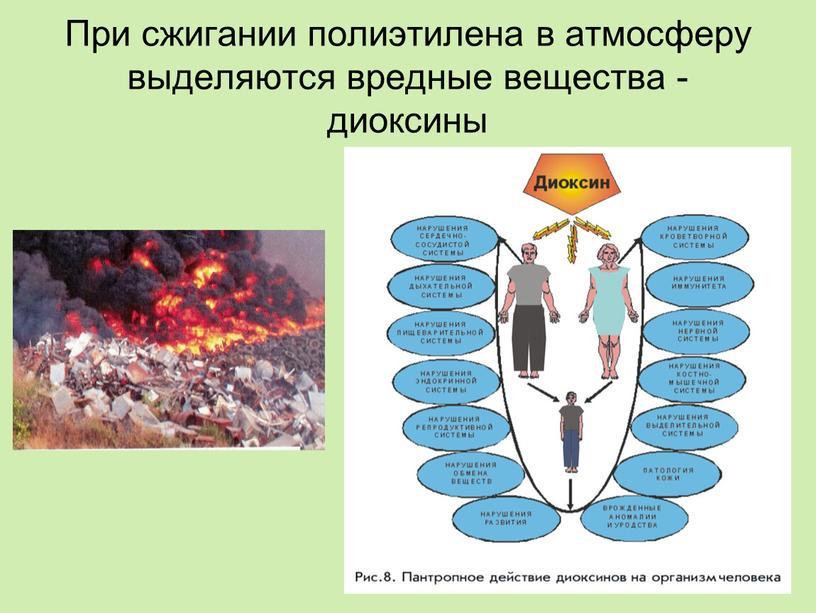 При сжигании полиэтилена в атмосферу выделяются вредные вещества - диоксины