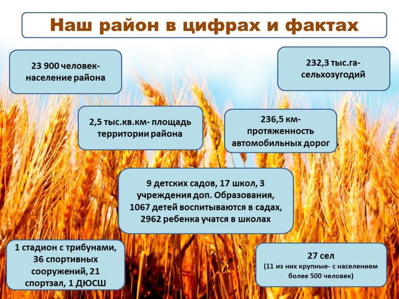 Наш район в цифрах и фактах 27 сел (11 из них крупные- с населением более 500 человек) 232,3 тыс