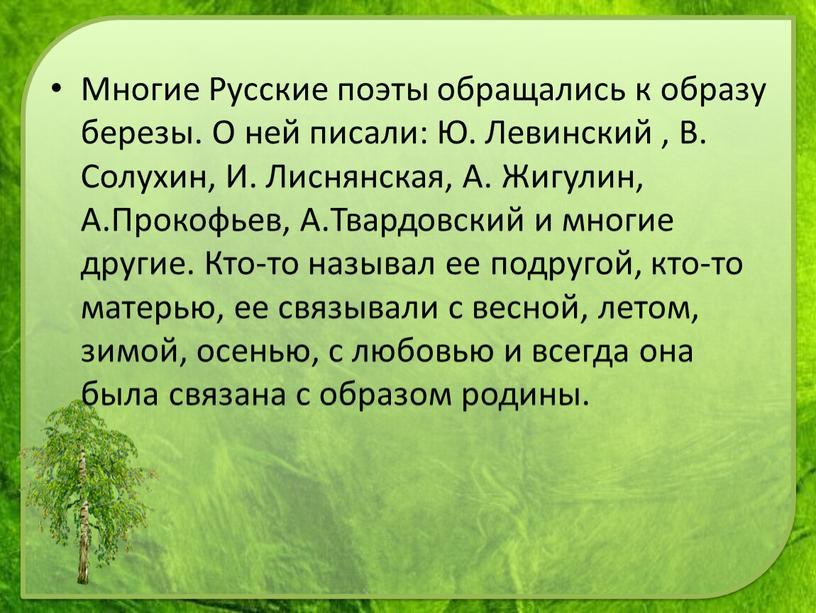 Многие Русские поэты обращались к образу березы