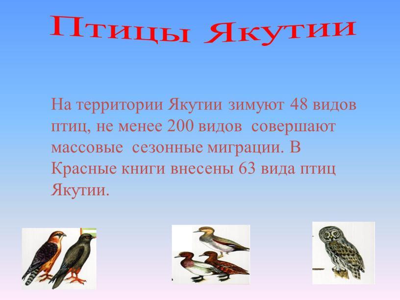 Птицы Якутии На территории Якутии зимуют 48 видов птиц, не менее 200 видов совершают массовые сезонные миграции
