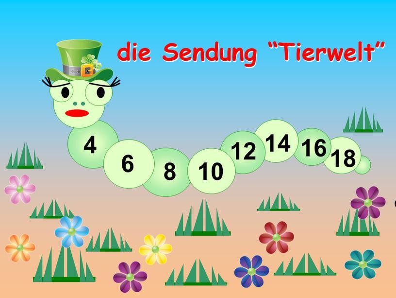 "Sendung ""Tierwelt"" 4 6 8 10 12 14 16 18"