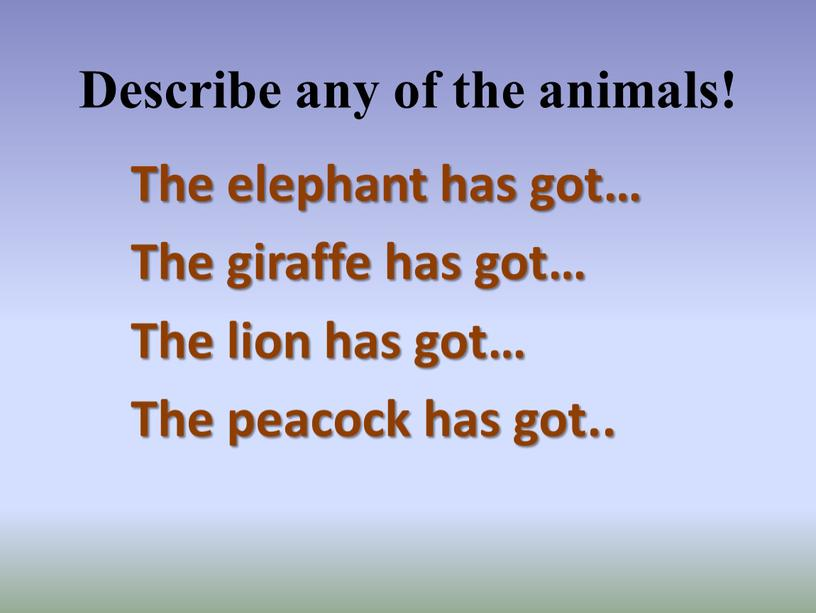 Describe any of the animals! The elephant has got…