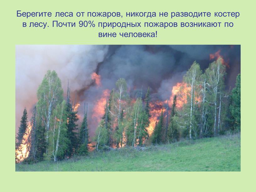 Берегите леса от пожаров, никогда не разводите костер в лесу