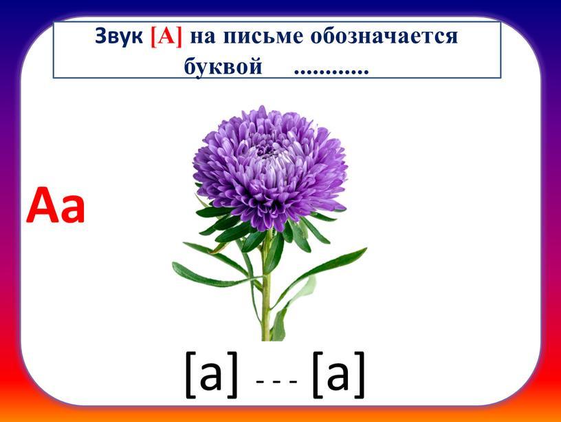 Аа - - - [а] Звук [А] на письме обозначается буквой